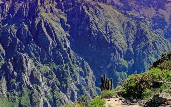 Landschap Colca Canyon (Large).jpg